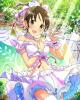 miyo+_nf.jpg